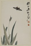 QI BAISHI: COLOR AND INK ON PAPER 'ORCHIDS & BUTTERFLIES'